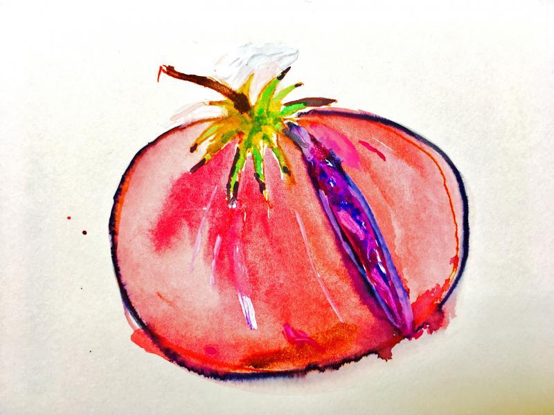 Tomate geöffnet