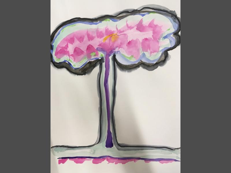 Wolkenbaum rose